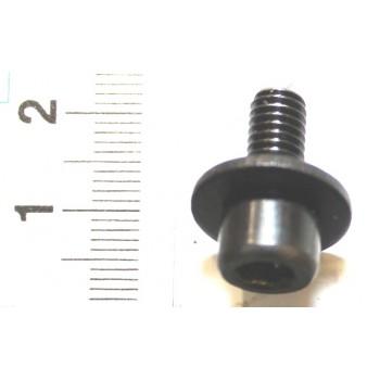 Tornillo para hoja en sierra de inmersión Scheppach PL285