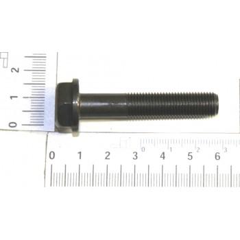 Schraube für Rasenmähermesser Scheppach