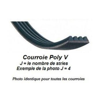 Correa Poly V 6PJ242 para tupi del mini-combinado Jean l'ébéniste COMB150