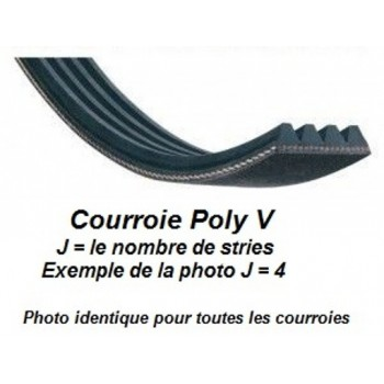 Correa Poly-V 483J4 para regruesadora del combinada Lurem Maxi 26 y LC310