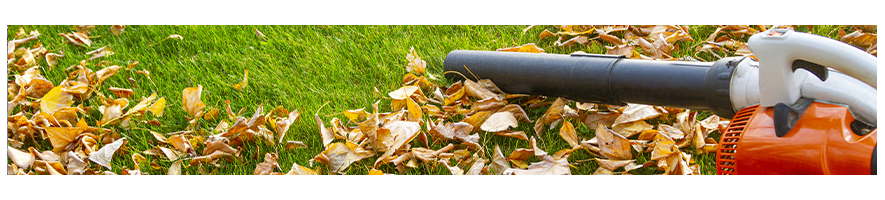 Soffiatore per foglie - Probois machinoutils
